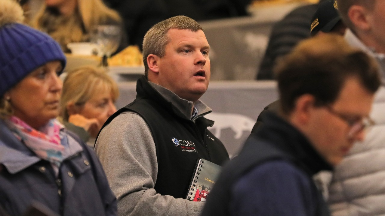 Gordon Elliott Lands Showstopping Bid Of 163 330 000 To