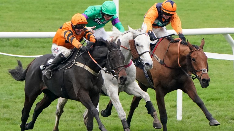 West Approach finally tasted Cheltenham glory last month