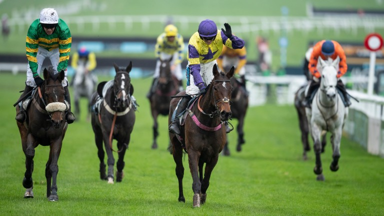 Happy Diva: enjoyed a memorable success in the Paddy Power Gold Cup last season