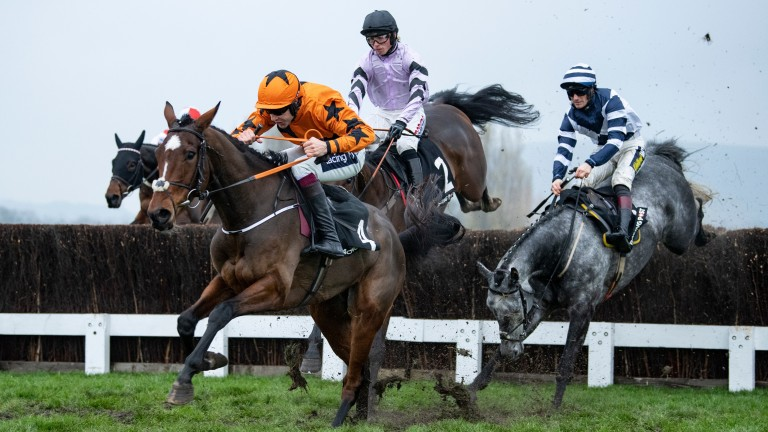 Put The Kettle On (orange): won at the meeting last year before going on to festival glory