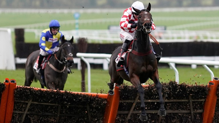 Hang In There: smart novice hurdler could go to Huntingdon next