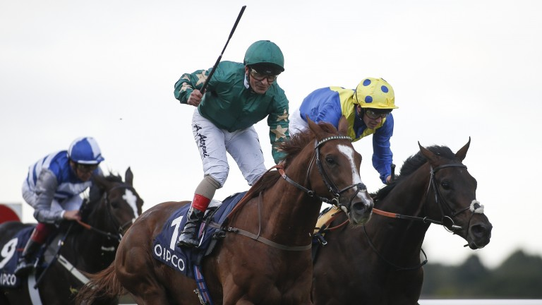 Irish Champion Stakes winner Decorated Knight has been a flag-bearer for the operation
