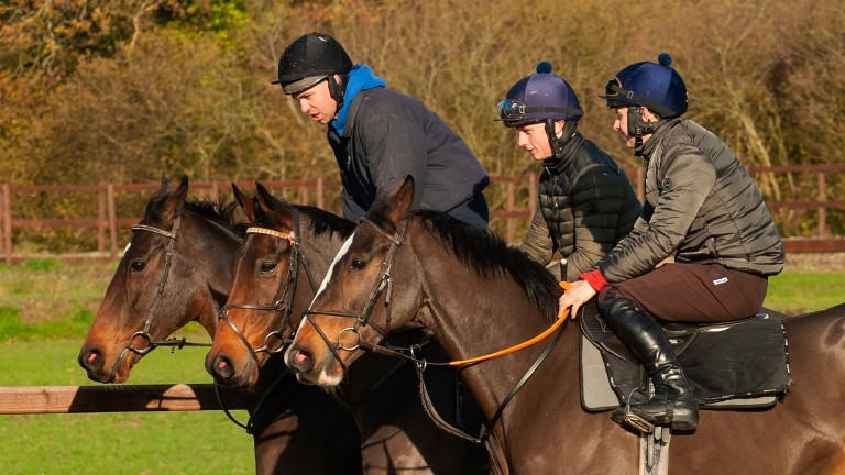 Equus Dancer (Donal Devereux) exercises on the round gallop at Peter Bowen's stables