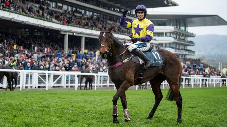 Happy Diva: landed the BetVictor Gold Cup last time out
