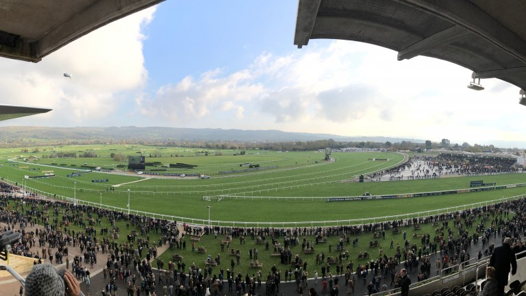 Cheltenham: stages racing on Friday and Saturday
