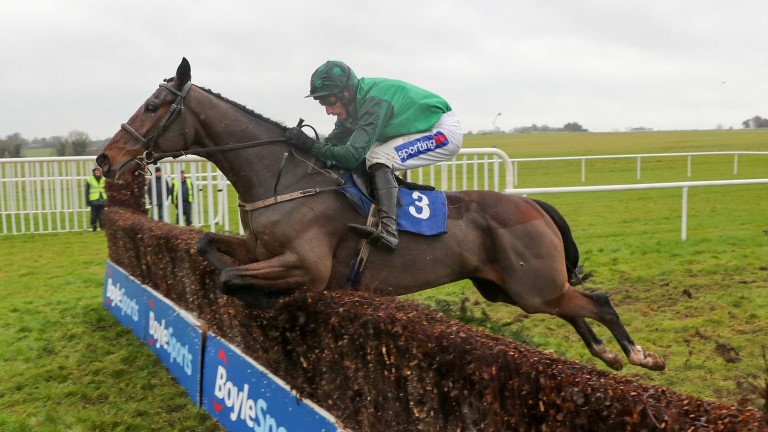 Footpad: taken out of three Cheltenham Festival races on Wednesday