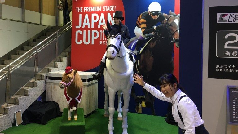 The Japan Racing Association's robot horse, used this week to promote the Japan Cup, cost in the region of £70,000/€80,000