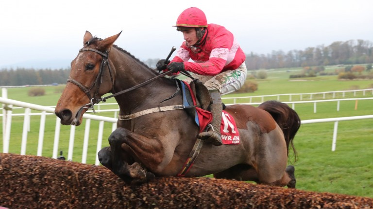 Laurina: one of the key players in a brilliant renewal of the Racing Post Novice Chase at Leopardstown