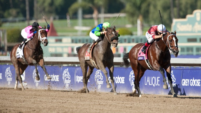 Tapizar, pictured winning the 2012 Breeders' Cup Dirt Mile, is moving to Japan