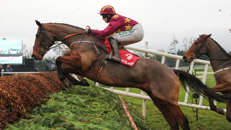 Minella Indo: second to the talented Laurina on his chase debut