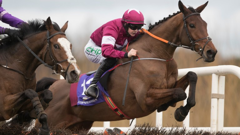 Cuneo needs to leave behind a disappointing Fairyhouse chase debut