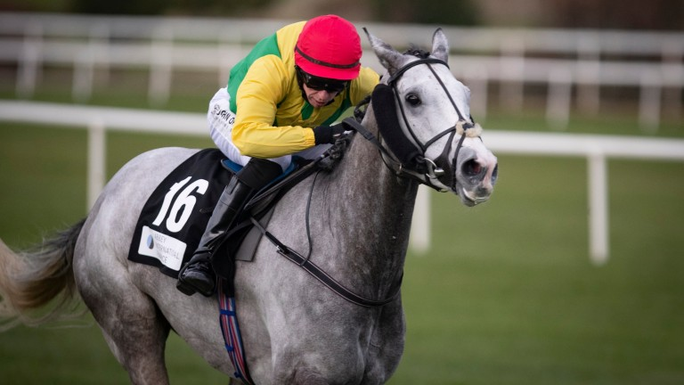 Whisperinthebreeze produced an excellent performance under Paddy Kennedy to win last season's Abbey International Leopardstown Handicap Chase