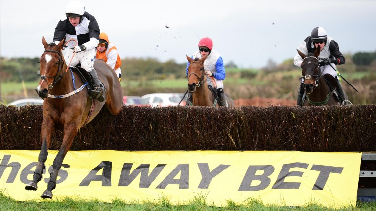 Gallyhill: easily won his sole point-to-point
