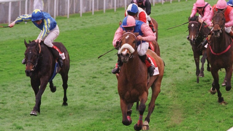 Silence In Court (noseband) and Allan Mackay win the 1998 Chester Cup