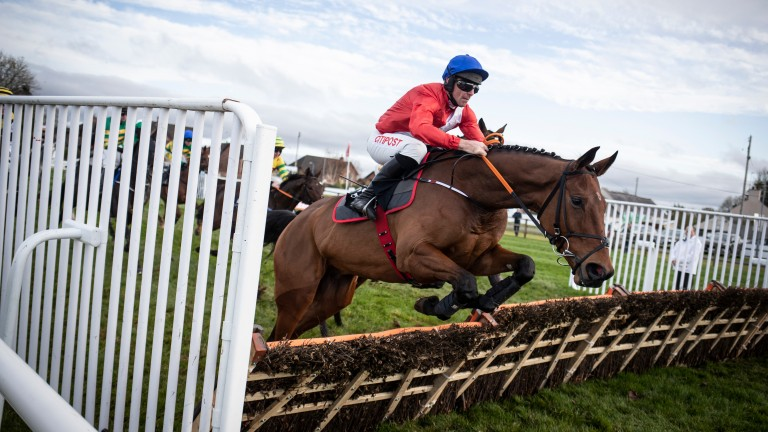 Envoi Allen can pick up lots of points in Grade 1 novice hurdles, starting with the Royal Bond at Fairyhouse on Sunday