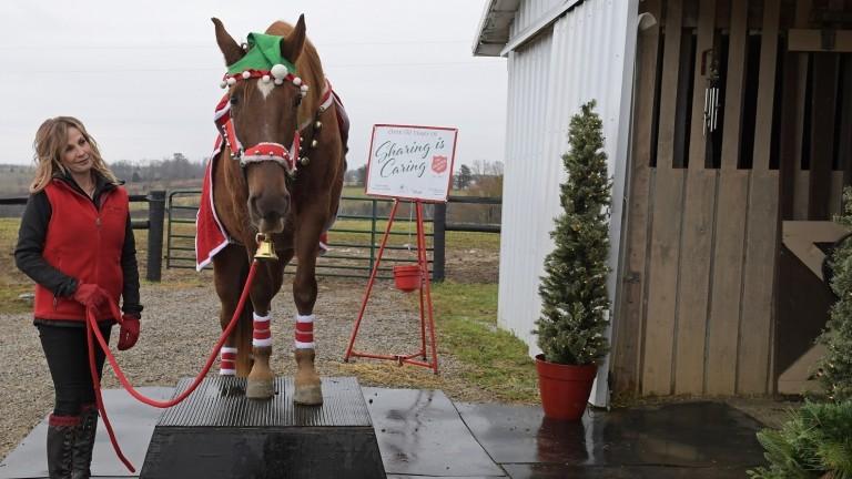 Tammi Regan with festive star Hank