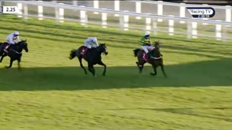 Champ has to swerve left to avoid running out at the elbow at Newbury on Friday