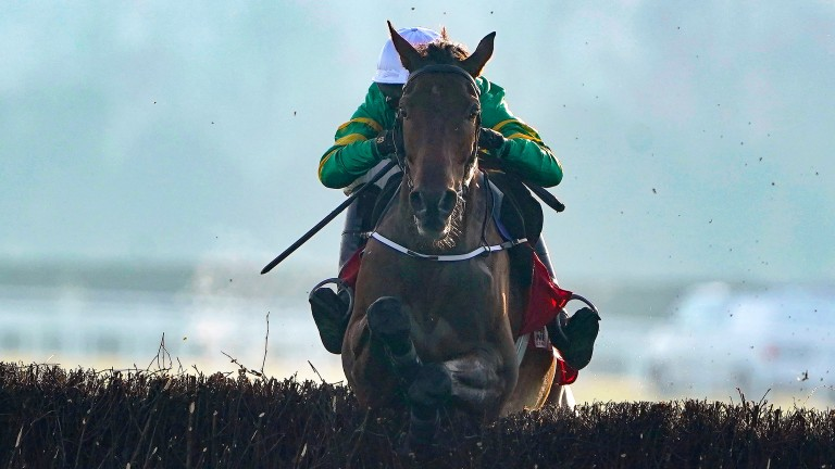 Fakir D'Oudairies is left clear in the Drinmore Novice Chase after Samcro's fall at the second-last fence