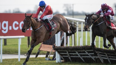 Envoi Allen: Gordon Elliott's crack youngster may run at the Dublin Racing Festival