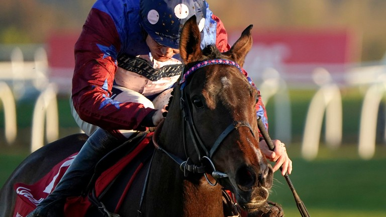 Connections of Paisley Park will now search for new options for their superstar staying hurdler