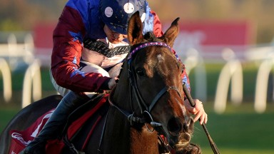 Paisley Park: made a winning start to the season in the Long Distance Hurdle