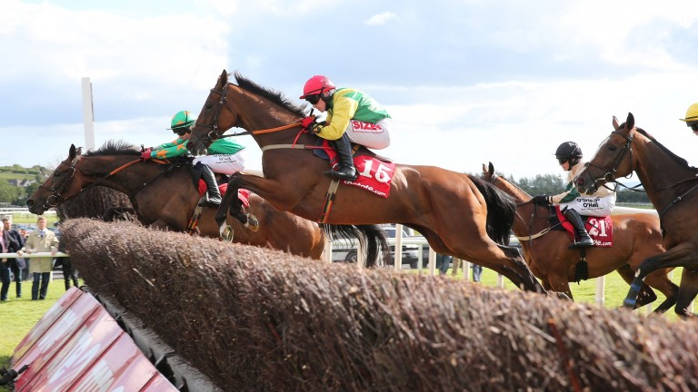 Shanahan's Turn: won the Galway Plate in 2015