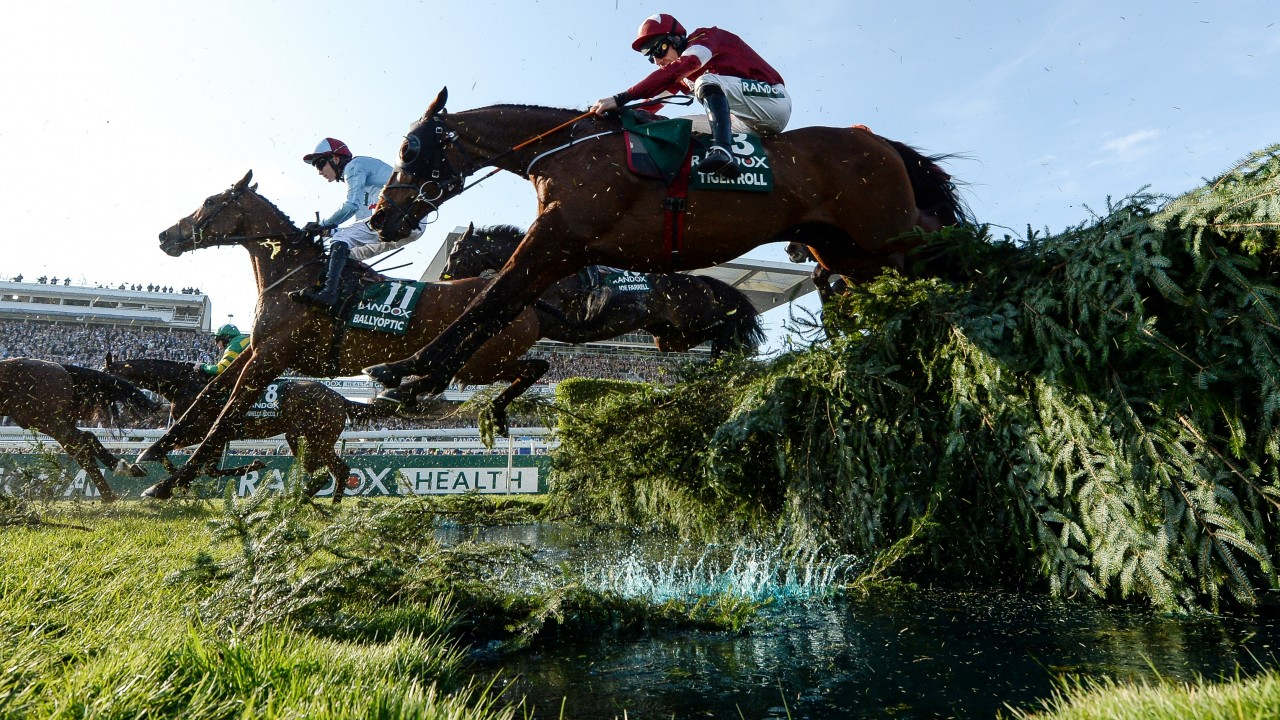 2020 Virtual Grand National: the full list of the 40 runners ...