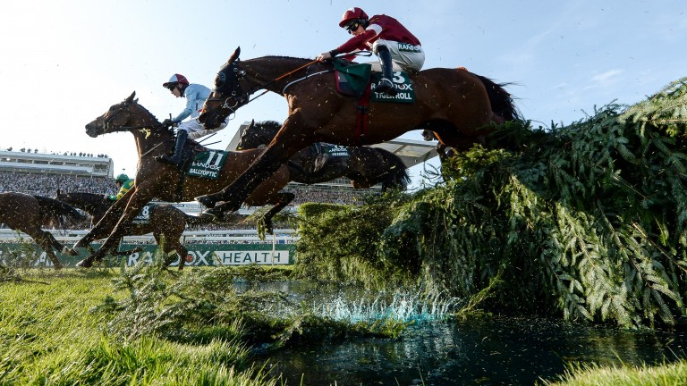 Tiger Roll: the two-time Grand National hero is 5-1 favourite for Saturday's virtual race