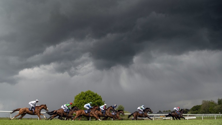 Lingfield: understood to be one of the tracks that could be used for racing's return