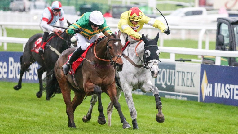 Defi Du Seuil (left) and Politologue fight out the finish of the Shloer Chase