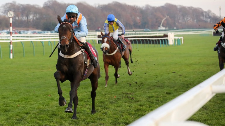 Marie's Rock: talented mare needs to settle better, says Nicky Henderson