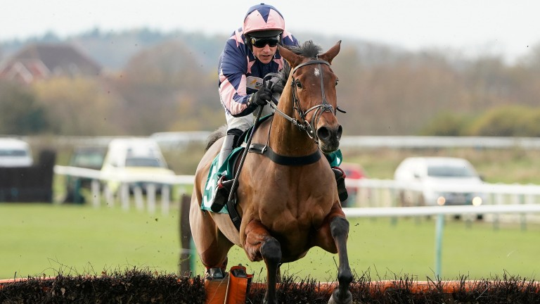 Emmas Joy: has a fine record at Warwick