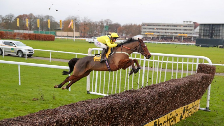 Lostintranslation: still on target for the £1 million bonus following his win in the Betfair Chase