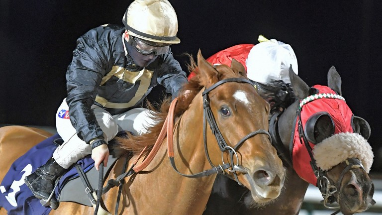 Hollie Doyle pictured riding her 107th winner Class Clown at Southwell