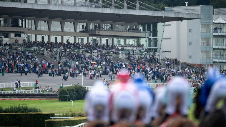 Sandown's Tingle Creek meeting on December 5 could be the first major fixture to feature the return of spectators