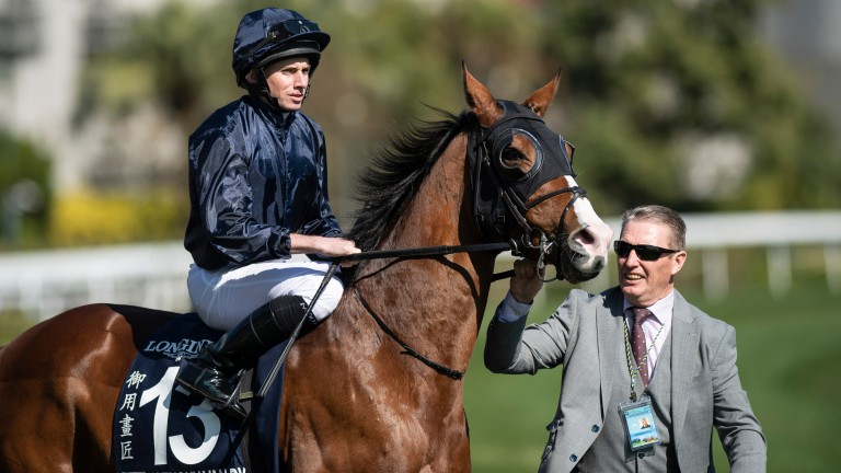 """Victoria Racing Club: """"We extend our condolences to the owners, trainer Aidan O'Brien and his team who cared for Anthony Van Dyck and are saddened by their loss"""""""