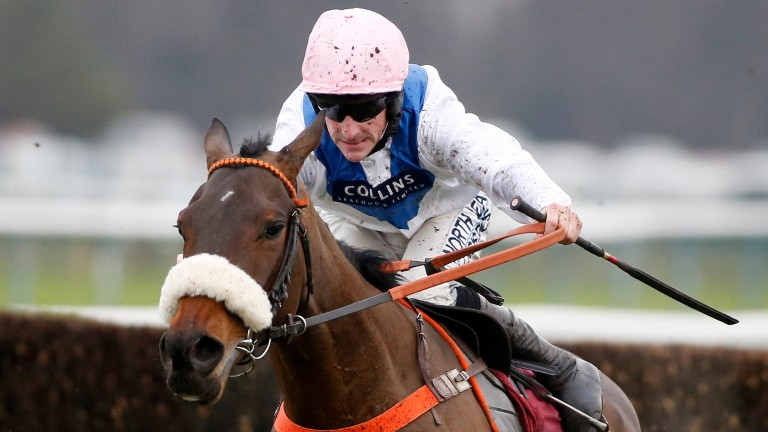 Waiting Patiently: removed from the Champion Chase, Ryanair and Gold Cup