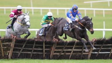 Horse Racing News | Latest Racing Updates | Racing Post