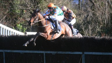 Paradise Run: strikes in the opening four-year-old mares' maiden at Borris House