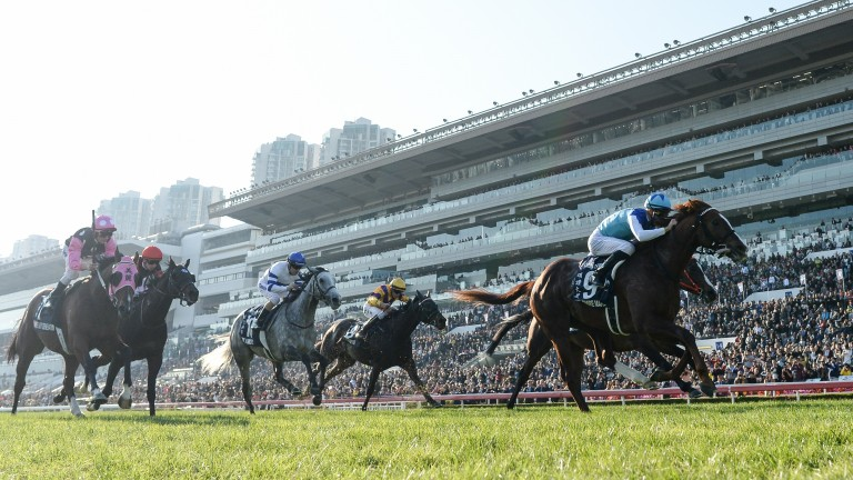 Hong Kong Mile winner Admire Mars was one of those Japanese stars left in limbo with the cancellation of the Dubai World Cup meeting