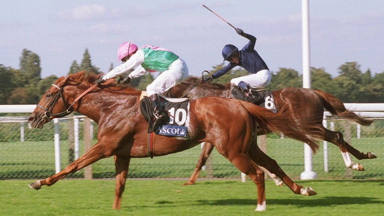 Observatory (10) denies Giant's Causeway in a thrilling finish to the QEII at Ascot in 2000