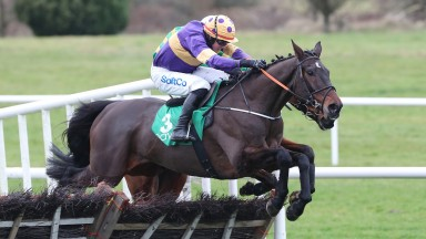Latest Exhibition: gets the better of Andy Dufresne in the Navan Novice Hurdle