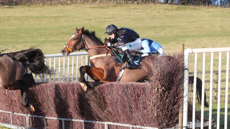 Don Poli: Grade 1 winner returned to the winner's enclosure at Alnwick
