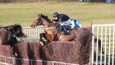 CHELTENHAM WINNING DON POLI Ridden by Mr T. Durrell  wins at the Ratcheugh Racing Club @ Alnwick  15/12/19Photograph by Grossick Racing Photography 0771 046 1723