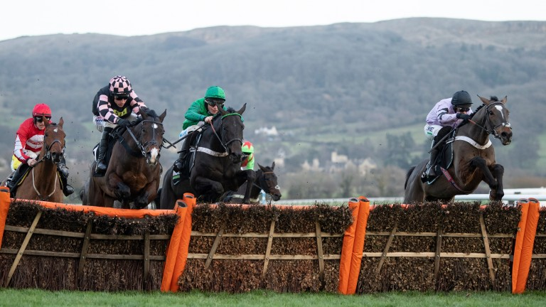 Nicky Henderson stablemates Call Me Lord (green) and Pentland Hills (right) jump the last upsides in the Unibet International Hurdle at Cheltenham