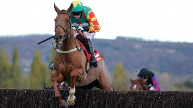 Lil Rockerfeller (Wayne Hutchinson) adds a Cheltenham novices' chase to his multiple wins on the Flat and over hurdles