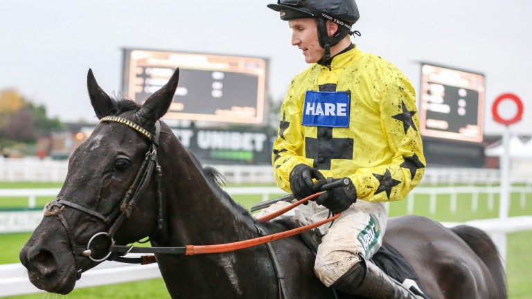 Harambe: 2019 Greatwood Hurdle hero could be seen over fences for the first time