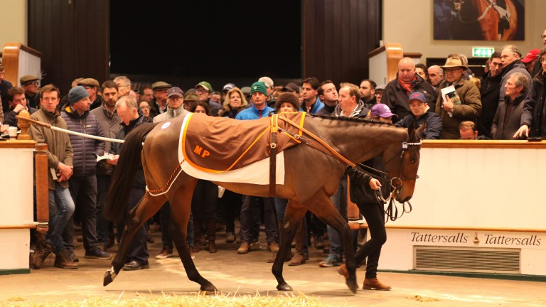 Marsha takes a turn in front of a packed Tattersalls auditorium