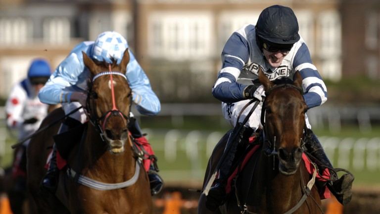 Gaspara (right): scooped the Imperial Cup and Cheltenham Festival bonus in 2007