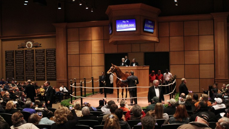Havre De Grace brings a bid of $10 million from Mandy Pope at Fasig-Tipton in 2012